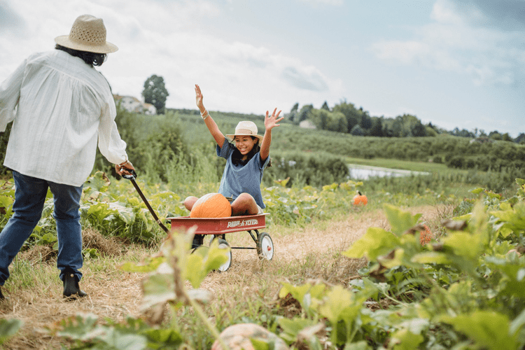 8 Events You Can Host at a Farm